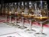 whiskytasting-schafstall